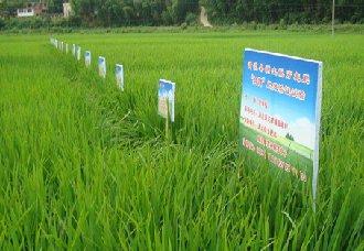 <b>云南曲靖沾益推动全区沃土工程实施 减少化肥投入使用</b>