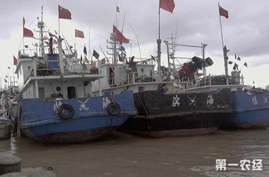 浙江临海:禁渔期捕捞71827公斤鱼 12人涉案人员被逮捕判刑