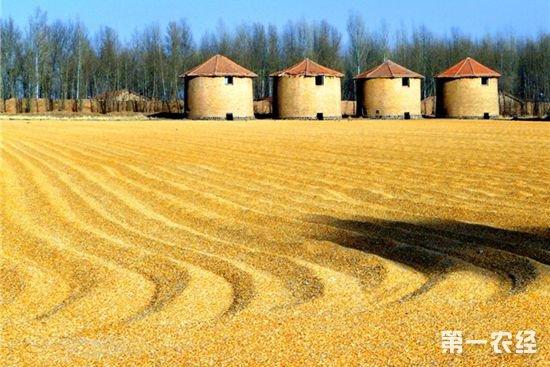2018年全球谷物产量及贸易量预测:一升一降