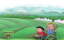 <b>张玉香:产业扶贫要重视四个方面</b>