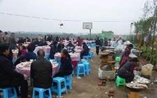 农村食安建设:全力共建农村食品安全环境