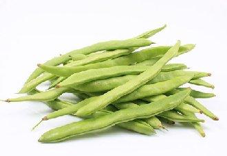 四季豆怎么种?四季豆的种植方法
