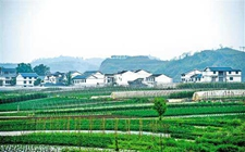 改善农村人居环境 造福后代人民