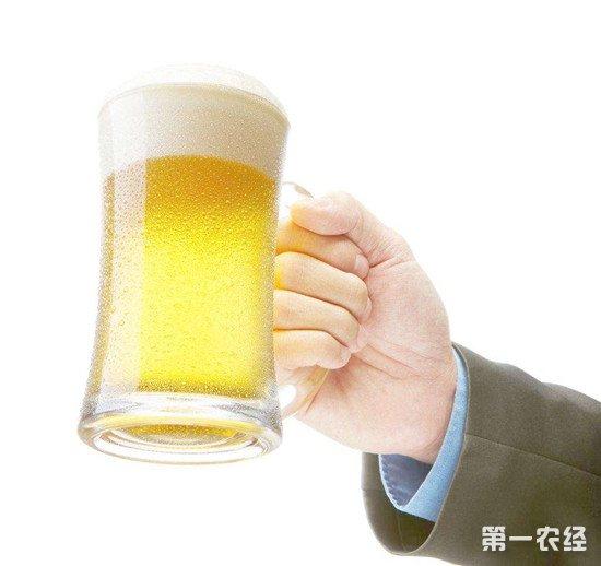 啤酒会导致肥胖吗?一瓶啤酒所含的热量让你意想不到