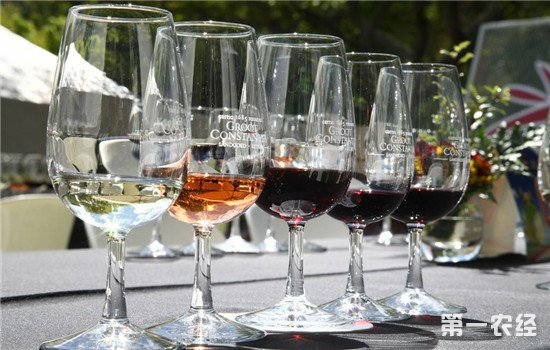 葡萄酒中都含有哪些味道?