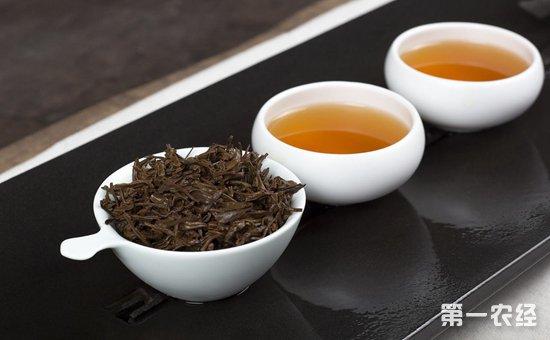 普洱茶怎么选购?普洱茶的选购技巧