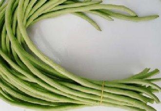 豆角常见的病害以及防治措施