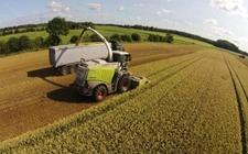 <b>德国农业发展是怎样的呢?德国农业全解析</b>