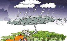 <b>农业保险升级已是农业发展所需!</b>