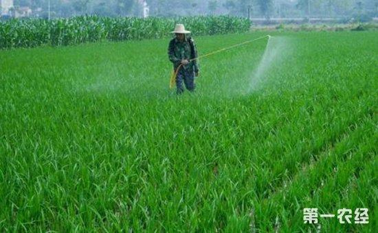 水稻农药喷洒