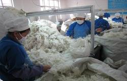 宁夏同心县:羊绒产业成脱贫致富主产业