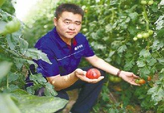 河南平舆县:80后杨新芳成为青年创业与助力扶贫的榜样