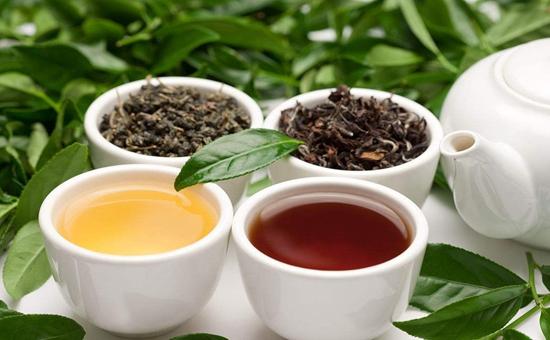 茶文化:中国饮茶和世界各国饮茶大不同