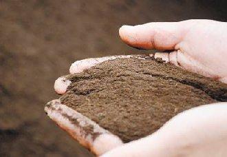 固体废物变废为宝,生产出高效有机肥
