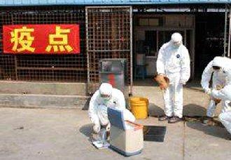 广西右江区:动物产地检疫可远程电子出证