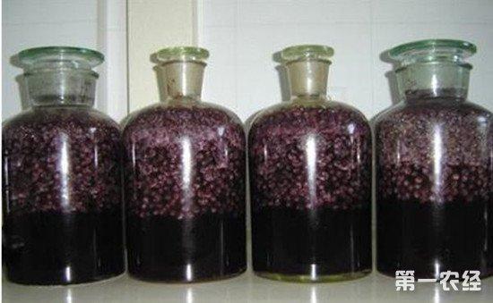 自酿葡萄酒可以放几年?判断自酿葡萄酒变质的方法