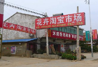 江苏沐阳县:进行多维度服务平台 打造花木电商产业