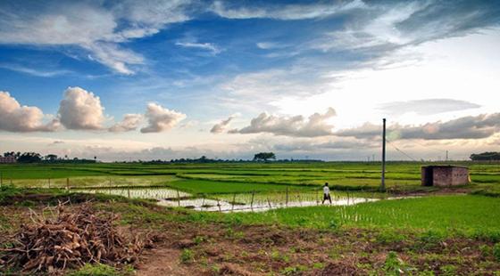 农业占地一亩补贴多少钱?农村占地的赔偿标准