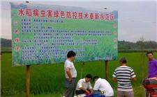 江西大力推广绿色防控 农药使用量连续三年下降