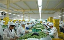 四川省大力发展农产品加工业 将建200个农产品加工园
