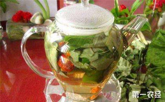 山楂荷叶茶的功效及禁忌图片