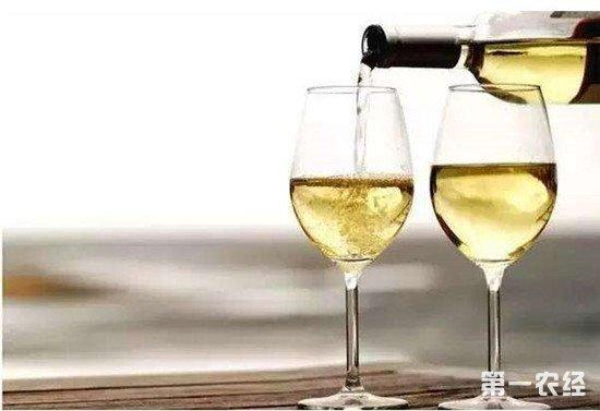 白葡萄酒怎么喝?品尝白葡萄酒的技巧