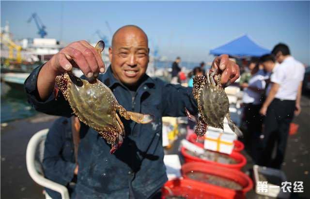 2018年年螃蟹产量和价格情况分析