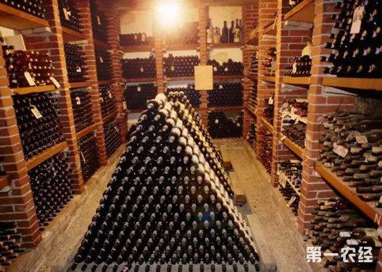 收藏葡萄酒要怎样的环境?保存葡萄酒注意事项