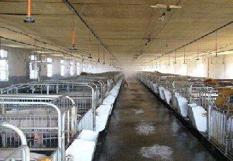 <b>养猪场中需要哪些设备?养猪场设备的作用</b>