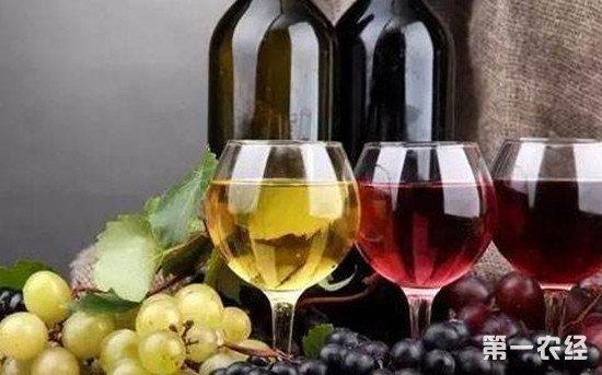 葡萄酒每天适合喝多少?什么时间喝最好