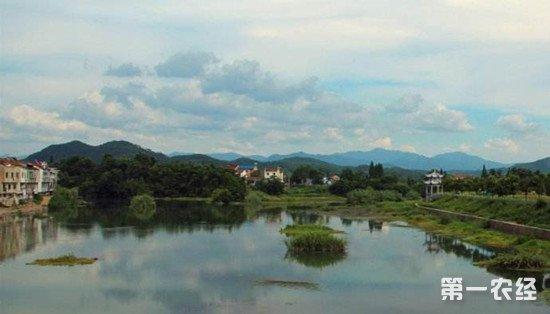 浙江诸暨打造乡村旅游 一村一特色