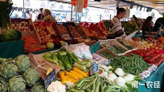 长假期间蔬菜供应充足 不利天气对菜市场影响有限