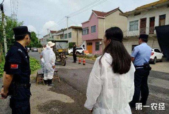 辽宁省营口市发生一起非洲猪瘟疫情 已是我国第21起