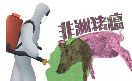辽宁第2起!辽宁营口市发生非洲猪瘟疫情