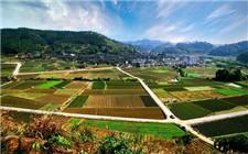 广东省出台农村土地规划三年行动方案