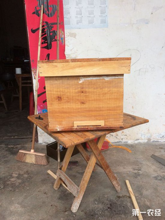 蜜蜂养殖:买的蜂箱不合用,自己做蜂箱成本太高,怎么办?
