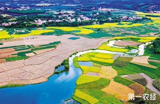 农业部:积极支持各地发展优势特色农业产业