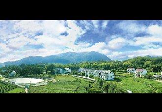 <b>安徽岳西:科技帮助当地发展山区生态型蔬菜</b>