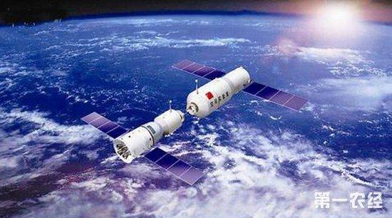 天宫二号空间种植:植物在太空中寿命显著延长