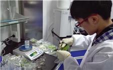 宁夏推行食品风险分级管理 对食品安全进行精准化监管