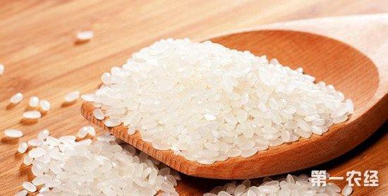 5月日中农业谈判成果显现 日本大米出口中国