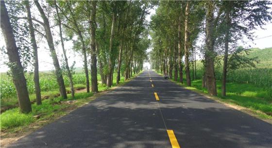 保障乡村公路不被侵占 确保乡村出行通畅