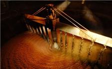 啤酒是怎么酿造而成的?啤酒的酿造步骤