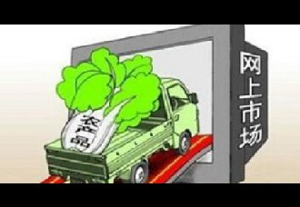 "<b>合肥:农产品搭上电商""快车""助脱贫</b>"
