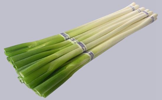 大葱怎么种?大葱的种植技术