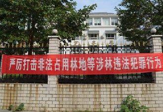 湖南衡阳:完成森林禁伐减伐三年行动工作任务
