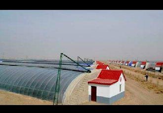 科技助力戈壁农业,不毛之地成优良果蔬的丰产之地
