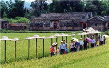 13部门联合发布乡村旅游发展提质行动方案