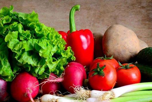 贵州加学村:有机蔬菜助贫困群众实现脱贫