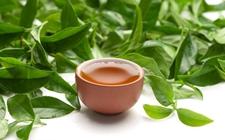 中国茶叶飘香波兰国际茶文化节